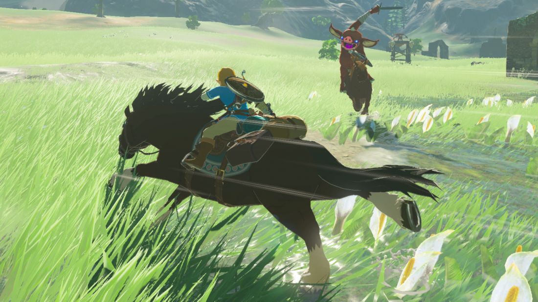 Image The Legend of Zelda : Breath of the Wild 10